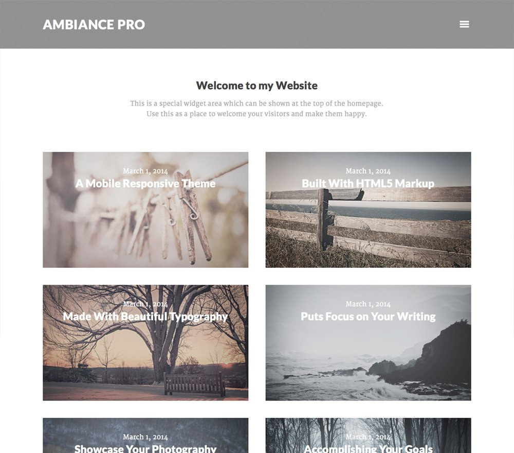 tema-ambiance-pro-theme