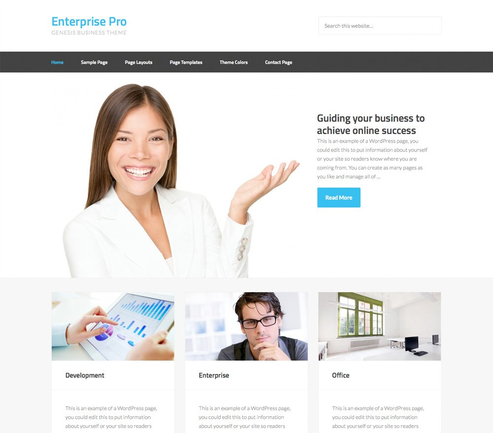 Enterprise Pro - Un tema para Genesis Framework