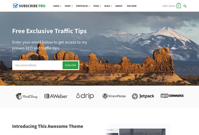 subscribe Pro es un Theme para WordPress y optimizado para WooCommerce para páginas corporativas